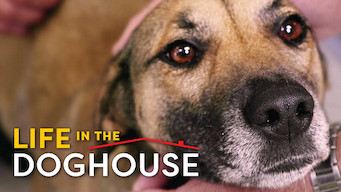 Life in the Doghouse (2018)