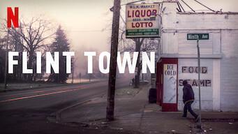 Flint Town (2018)