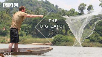 The Big Catch (2015)