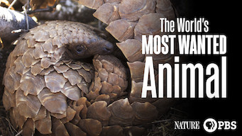 The World's Most Wanted Animal (2018)