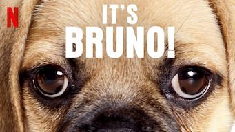 It's Bruno! (2019)